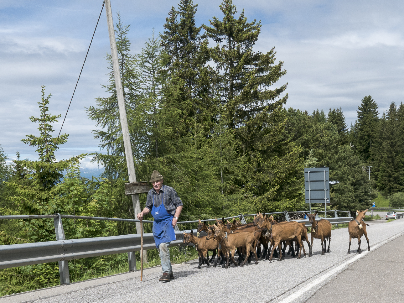 Fotoreisen Dolomiten 1060278