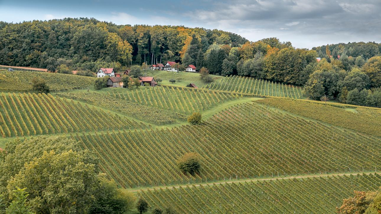 Fotokurs Steiermark Weinstrae Steirische Toskana Fotoworkshop 1080700