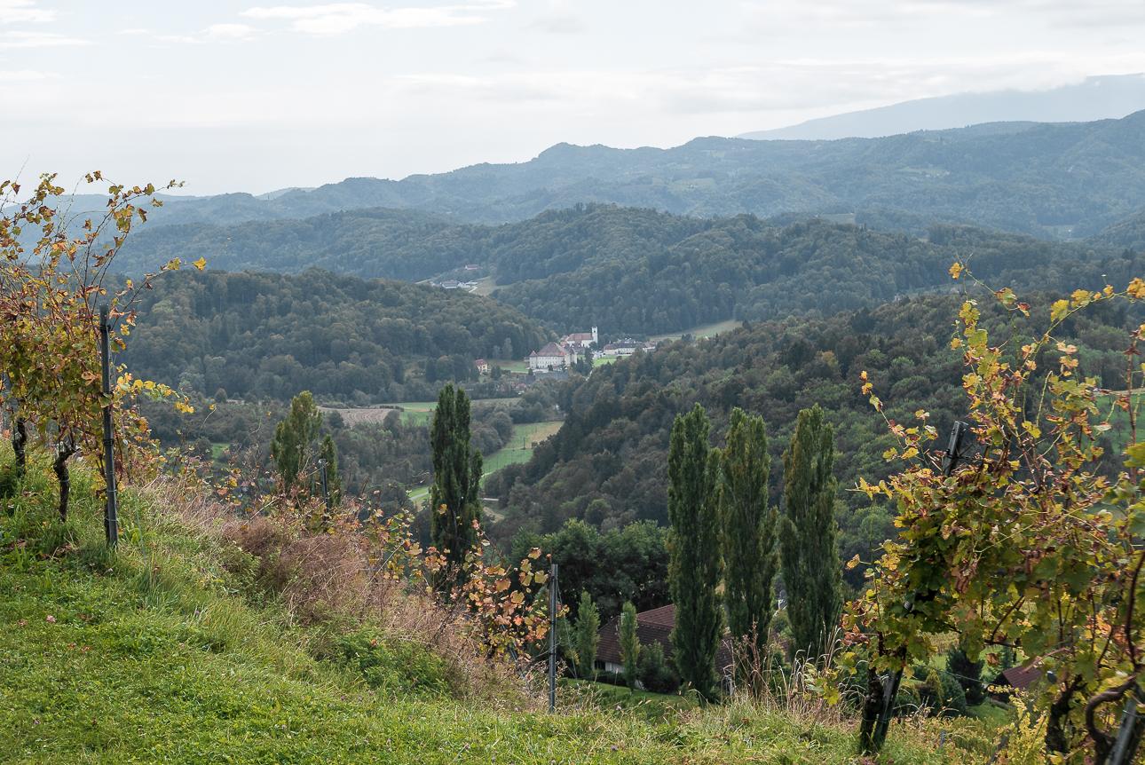 Fotokurs Steiermark Weinstrae Steirische Toskana Fotoworkshop 1080733